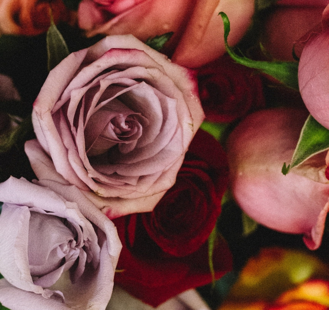 Gifting Flowers with Thoughtfulness (What Colors and Blooms Mean ...